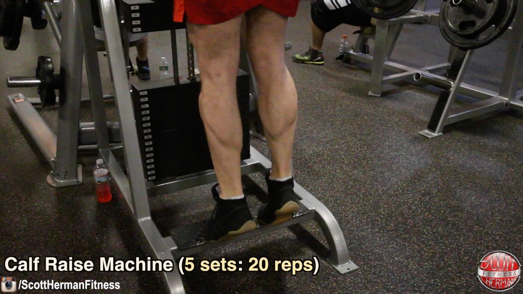 calf-raise-machine