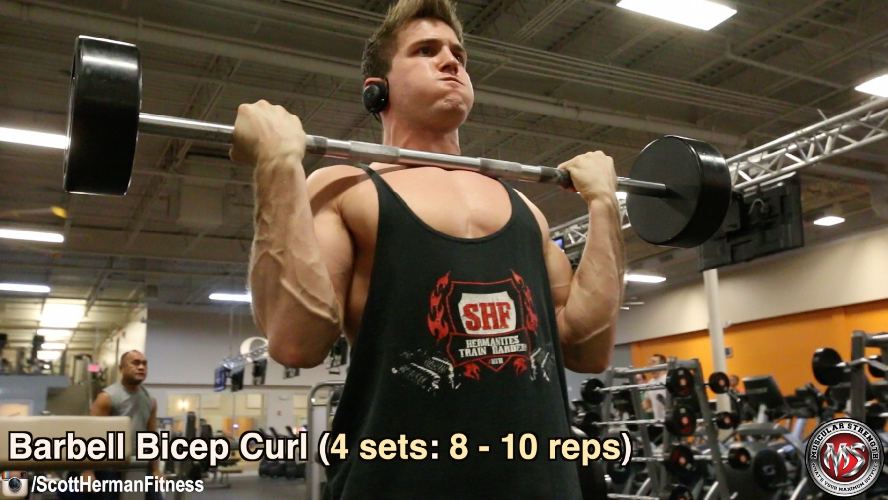 barbell-bicep-curl