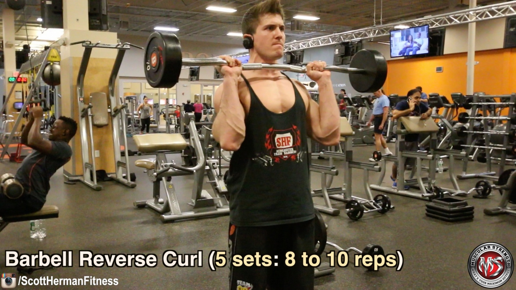 barbell-reverse-curl