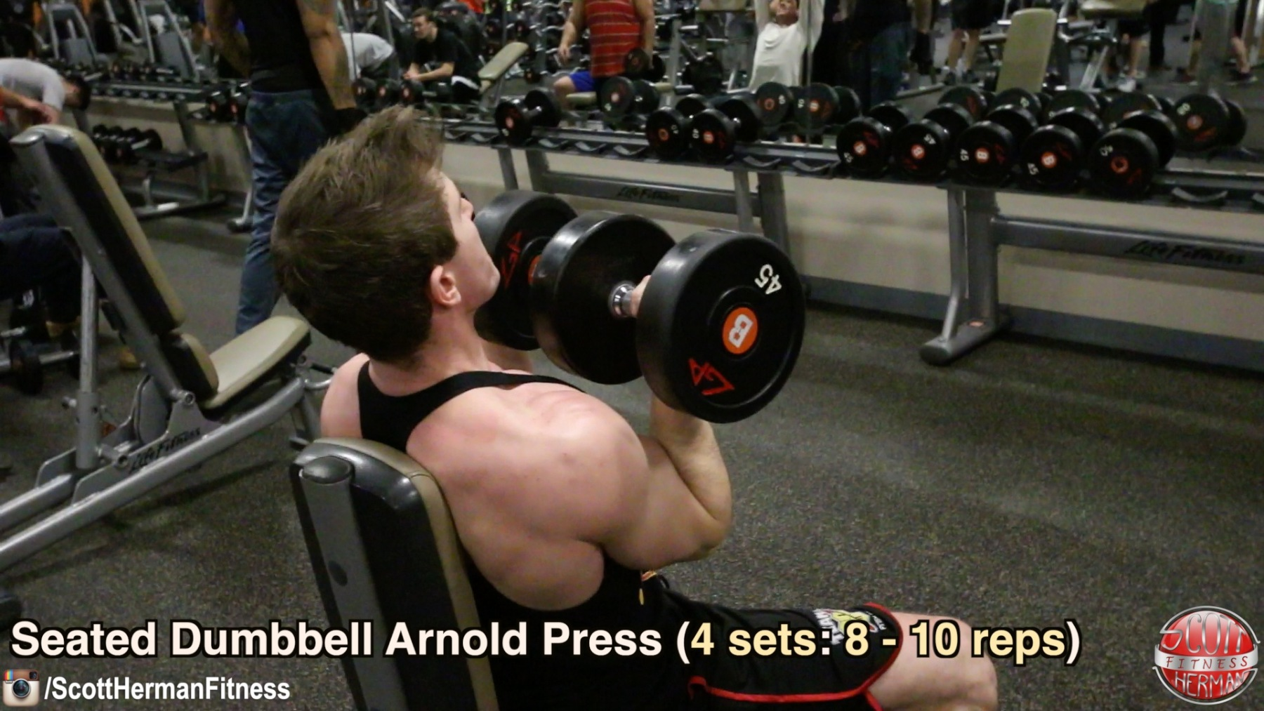 seated-dumbbell-arnold-press